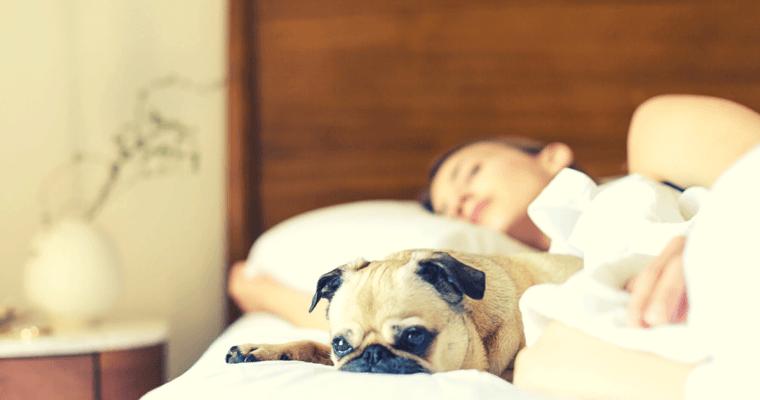 Overcoming Sleep Anxiety – 16 Natural Tips to Help!